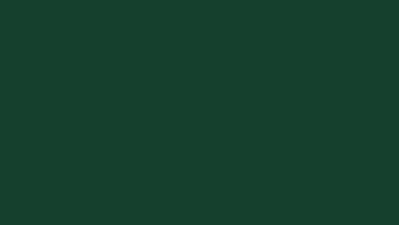 Egger U606 ST9 - Lesní zelená