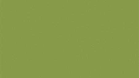 Egger U626 ST9 - Kiwi zelená