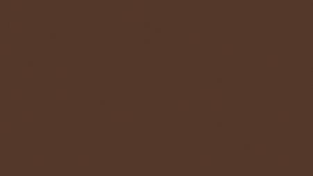 Egger U818 ST9 - Tmavě hnědá